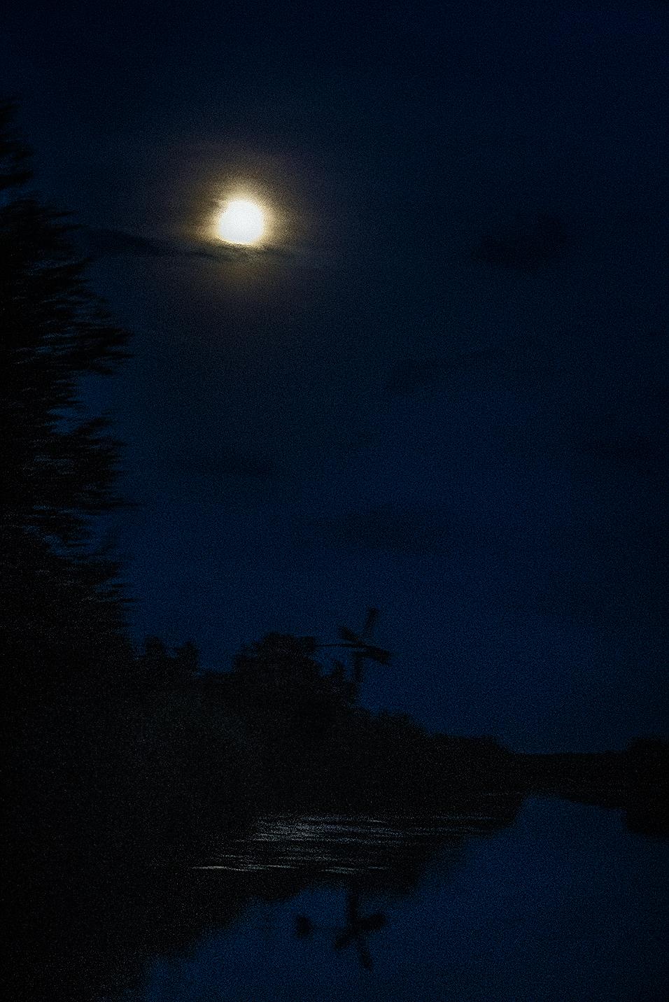 Foto Maannacht in natuurgebied Weerribben