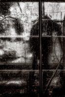 Categorie, Portret, condens, droplets, glas, greenhouse, kas, mens, monochrome, ruit, vague, water, woman